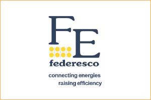 FE logo with border