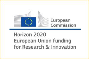 Horizon H2020 logo
